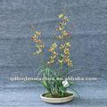 Vermelho artificial orquídeas vanda caules flores, artificial em vaso de orquídeas