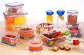 économiseur d'aliments en plastique contenant