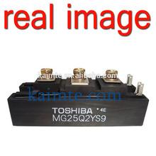 IGBT MODULE MG25Q2YS9