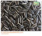 New crop 2014 sunflower seed market price, list of agricultural companies