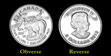 1 Gram Canadian Moose 999 Pure Silver Coins for Gifts