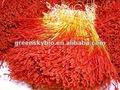 di alta qualità di estratto di zafferano