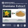 100% natural 4:1 10:1 20:1 damiana extract powder