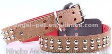 leather dog collar Studs dog collars 2012