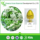 100% Pure Natura 98% Quercetin,Extract Powder CAS NO. :6151-25-3