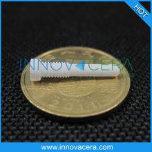 Low Thermal Conductivity/Alumina/Zirconia Ceramic Screw/Innovacera