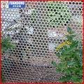 Métal perforé clôture, tôle perforée( usine prix de vente)