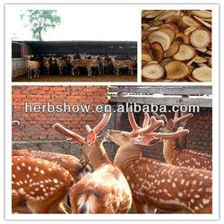 Deer antler velvet powder / lu rong/ cornu cervi powder herb medicine