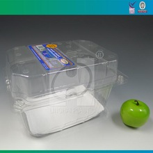 Clear Disposable Plastic Punnets Packing Fruits