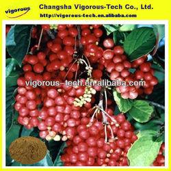 Schisandra Extract/schisandra berry extract/schisandra fruit extract