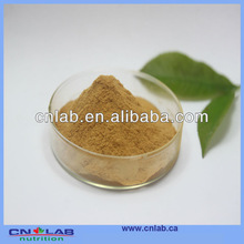 100% natural astragalus herbal extract