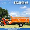 MOTOR TRICYCLE BD250ZH-6A Trimoto de carga Triciclo Motocar motocarro mototaxi Triporteur furgon motocicleta 3 wheel rickshaw