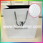 Luxury Custom Paper Gift Bag
