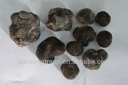 Chinese black whole truffle mushroom buy truffle