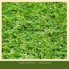 free samples artificial grass carpet