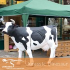 Animated Cow Model Life Size Animal