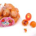 Chine fournisseur de confiserie, ligh jusqu'à oeufs, candy toy