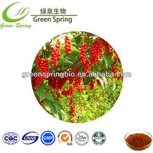 Schisandra Extract schisandra A 5% in stock