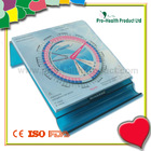 Desk Type Pregnancy Wheel With Memo Pad