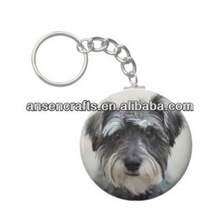 Custom Made Metal Animal Keychains Souvenir Key Chain with key chain ring