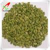 Green Pumpkin Seed Kernels