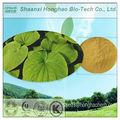 100% nature kavalactones 30% hplc kava root extrait