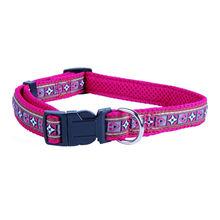 Jacquard Ribbon Dog Collar & Matching Leash