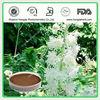 ISO&KOSHER Black Cohosh Root Extract Powder