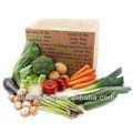 2013 caixa de papelão ondulado para a embalagem de produtos hortícolas