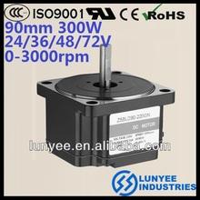 High power 12 volt bldc motor