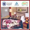 High quality acrylic blanket/acrylic mink blanket/ china blanket