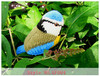 Blue Tit-lifelike hand knitted bird shelf ornament home decoration