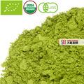 matcha orgánico al vapor de té verde
