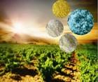 npk fertilizer 30-10-10