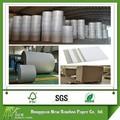 la rigidez duro a4 biodegradables de papel de cartón
