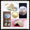 garlic extract allicin powder,garlic extract liquid