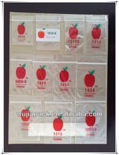 LDPE custom small apple ziplock bag