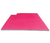Rhombus lines 2.5cm thickness taekwondo mat for fitness center/Reversible martial arts mat/high grade Sports Flooring Mat