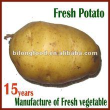 2015 new farm fresh yellow potato (China)