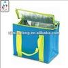 high quality eco friendly non woven cooler bag(wz4299)