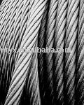 Electro and hot-dip galvanized, bright,Plastic Coated STEEL WIRE ROPE(Dia.1.5mm-60mm)