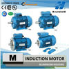 Single Phase Motor With IEC