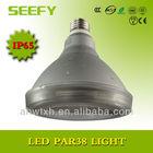 UL listed Waterproof 10/15W IP65 PAR38 LED Spot Light