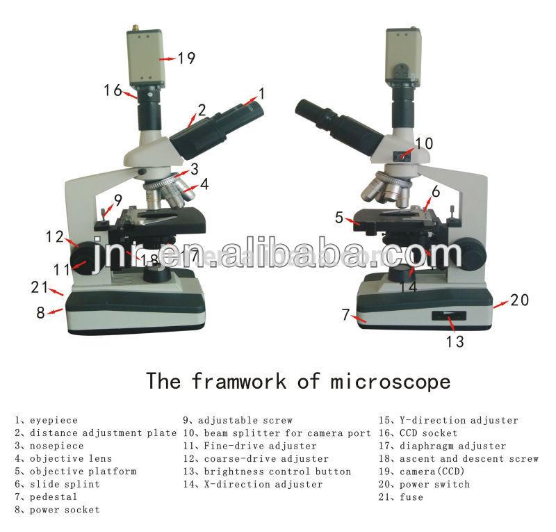 Bio- video microscopio de los animales