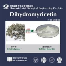 vine tea extract 50% 80%, 90%,95%, 98% bulk dihydromyricetin