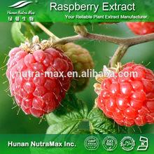 Weight Loss Natural Raspberry Extract Powder Raspberry Ketone 4%