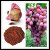 2%-10% Resveratrol pure natural Grape Skin Extract
