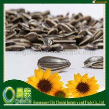 Bulk Raw Sunflower Seeds Material Reasonable Price