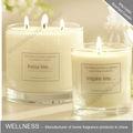Três mechas scented da soja cera velas& vela perfumada