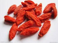 Goji berries/red medlar
